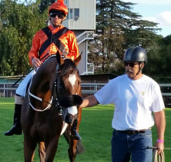 Abashri with Malan du Toit at the start of the SA Derby.